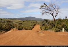 William Bay NP, Western Australia, Australia (JH_1982) Tags: park nature bay scenic australia william national western wa np australien occidentale australie occidental ladscape austrália 澳大利亚 australië オーストラリア австралия 오스트레일리아 주 西オーストラリア州 australieoccidentale западная ऑस्ट्रेलिया 西澳大利亚州 웨스턴오스트레일리아 पश्चिमी
