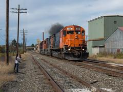 Driftwood Bound (Joseph Bishop) Tags: wnyp ol3 685 alco mlw c636 trains train track tracks railfan railroad railway rail rails