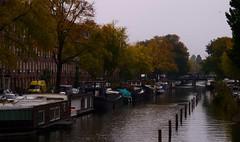 Herfst aan De Wittenkade (Skylark92) Tags: nederland netherlands amsterdam west de wittenkade autumn herfst gracht canal bridge van limburg stirumstraat tweede nassaustraat brug woonboot woonboten