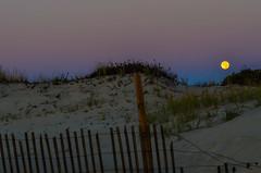 NJShore-21 (Nikon D5100 Shooter) Tags: beach jerseyshore ocean sand water waves