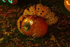 (theleakybrain) Tags: pumpkinnights pumpkin nights mnstatefair p1460096 halloween halloweenwalk minnesota jackolantern jack lantern