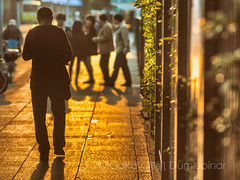 afternoon glow (b56n22) Tags: shanghai streetwalk afternoonwalk china puxi frenchconcession chinese d810 135mm