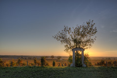 Le Clos des Ormes (Marc_L21) Tags: france bourgogne burgundy côtedor vignoble vineyard leverdesoleil sunrise