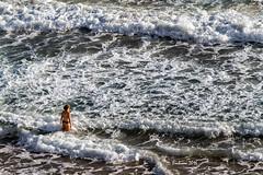 Despidiendo el verano del 2016 (erubicon) Tags: espaa comunidadvalenciana alicante benidorm playadelevante canoneos7d canon70200f4lis