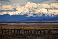 Rockies from Frank Lake (John Andersen (JPAndersen images)) Tags: alberta franklake rockies telephoto zoom