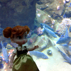 Anna at the Aquarium (DollyCheeseCake) Tags: frozen disney mini doll store animators collection anna princess academy science aquarium fish