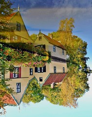 Upside down (roprik) Tags: weelsloot roprik netherlands nederland kleuren color westzaan reflectie weerspiegeling explore zaanstad europa water huis house building