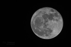 Supermoon - Nov 14, 2016 (J.L. Ramsaur Photography (Thank You for 4 million ) Tags: jlrphotography nikond7200 nikon d7200 photography photo cookevilletn middletennessee putnamcounty tennessee 2016 engineerswithcameras cumberlandplateau photographyforgod thesouth southernphotography screamofthephotographer ibeauty jlramsaurphotography photograph pic cookevegas cookeville tennesseephotographer cookevilletennessee nature outdoors macro macrophotography closeupphotography closeup godsartwork naturespaintbrush bw blackwhite blackandwhite nik niksilverefexpro2 silverefex nighttime nightphotography afterdark atnight supermoon moon themoon supermoonnovember142016 macromoon moondetails lightsideofthemoon darksideofthemoon craters moonlandscape mooncraters