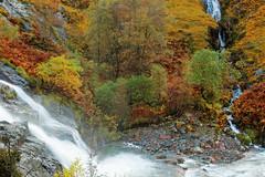 JOINING FROM THE SIDE (skysthelimit333) Tags: glencoe scotland scottishcountryside scottishhighlands waterfalls scottishwaterfalls