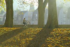 Poser;-) (ploh1) Tags: besanon herbst radfahrer fahrrad herbststimmung jugendlich jugendlicher jung mensch person bltter laub allee frankreich kunststck farbig bunt bume natur stadt huser sonnenlicht schneswetter landschaft goldeneroktober