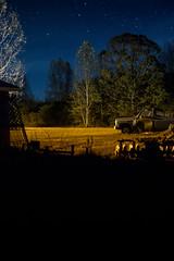 Night Yard (MikeyMcInnis) Tags: smith lake weed cotton stars astrology junkyard fall autumn alabama jasper walker county