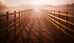 Afterglow (David Haughton) Tags: morning sun sunrise dawn light warm winter mist haze walkway bridge pier path pathway glow glowing