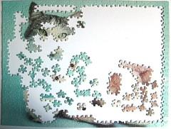 Guiness (Rachael Hale) (Leonisha) Tags: puzzle jigsawpuzzle unfinished