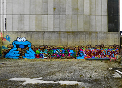 To the Swiftest Goes the Cookies (Steve Taylor (Photography)) Tags: cookie monster ikarus dcypher dtrcrew leeya jethro yikes bottle crosseyed googlyeyed emma jungle jems art graffiti cartoon mural streetart tag building colourful fun happy smiling gravel rubble concrete newzealand nz southisland canterbury christchurch city cbd