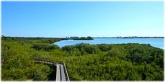 Boca Ciega Millennium Park - Seminole, Florida (lagergrenjan) Tags: boca ciega millennium park seminole florida tower boardwalk