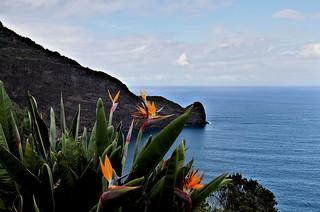 Madeira: