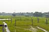 Houses on stilts (Francisco Anzola) Tags: bangladesh swampy water vegetation houses stilts