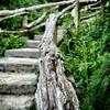 Pathway (halifaxlight) Tags: wood fence square bokeh steps weathered bermuda shrubs pathway baileysbay grottobaybeachresort vanagram beyondbokeh