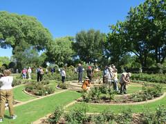 Garden of Dirkie Heroldt