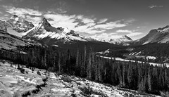 A path to hike (CNorthExplores) Tags: travel autumn bw white canada black mountains canon hiking trail alberta banffnationalpark g11 icefieldsparkway canadianrockies