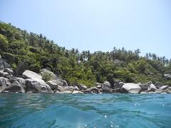 Thailand - Ko Tao DSCN2066 (White Shark5) Tags: sea lake fish green beach water coral thailand temple underwater blu dive scuba ko samui tao pha ngan munk