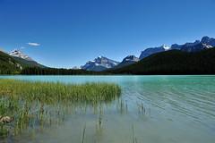 DSC_3570 (aha0301) Tags: lake landscape banff banffnationalpark d700 afsnikkor2470mmf28g waterfoullake