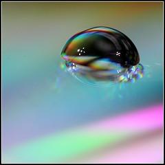 Droplet 2 (Len_Scapov) Tags: distortion macro reflection 50mm leeds droplet dist lenscapov photocampleeds2014
