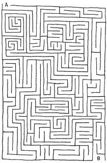 A Maze A Day: 003