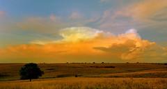 Going Lateral (thefisch1) Tags: cloud color nikon colorful nimbus horizon pasture kansas thunderstorm plains developing cumulo