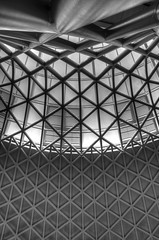 Kings cross roof b&w (alex_babbler) Tags: roof white black cross railway kings lattice