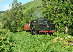 welsh safari (midcheshireman) Tags: overgrown wales train railway steam vegetation llangollen llangollenrailway lineside