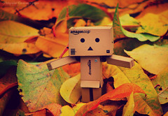 Danboo in autumn (covercencogrigore) Tags: autumn danboo