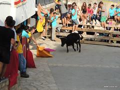 FiestasVispal14-068