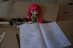 329/365 How to build a petite house - Part 1