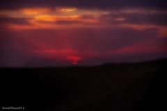 غروب (zemblated) Tags: sunset color sand desert algerie غروب souf الجزائر صحراء وادي رمال سوف ألوان