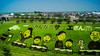 Art of rice fields (jyunbo) Tags: family art japan aomori 日本 ricefields sazaesan サザエさん 青森県 inakadate 田んぼアート 南津軽郡