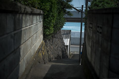 grafica_jp_flickr-883 (grafica.tokyo) Tags: art japan 50mm nikon f14 sigma kanagawa dg d800  hsm