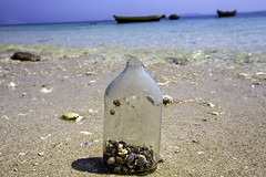 Message in the bottle (Iztok Alf Kurnik) Tags: ocean life travel sea shell