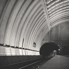 200 forty eight | 365 III (Randomographer) Tags: travel train underground subway concrete dc washington long exposure metro rail tunnel system transit commute 365 curved rapid 248 metrorail wmata project365