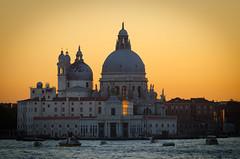 Venice III ~ Explored