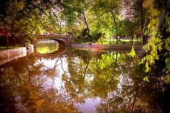 The end of days (Cristian Ştefănescu) Tags: park autumn lake fall downtown walk herbst lac teich parc bucharest bucuresti bukarest centru plimbare românia toamnă cișmigiu oraș