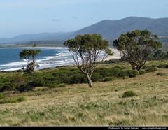 Mayfield Bay, Tasmania, Australia (JH_1982) Tags: bay coast tasmania coastline australien tas tassie mayfield australie 澳大利亚 tasmanien オーストラリア tasmanie австралия tasmânia 오스트레일리아 주 塔斯馬尼亞州 тасмания タスマニア州 태즈메이니아
