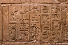 Luxor Temple Frieze (chrisgj6) Tags: egypt luxor eg luxorgovernorate