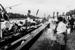 Victory Celebrations | Aranmula boat race 2016,Kerala. (vjisin) Tags: kerala india asia photostory nikon nikond3200 tradition nikonofficial documentary composition outdoor people indianheritage backwaters indianculture daylight iamnikon oarsman boatman aranmula men blackandwhite monochrome oarsmen celebrations splash