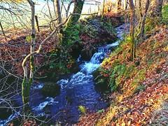 Blackditch (Bricheno) Tags: burn stream blackditchburn lochwinnoch bricheno scotland escocia schottland cosse scozia esccia szkocja scoia