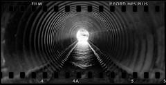 It's all down the drain someday. (mkberquist) Tags: pentax6x7 film mediumformat culvert drain downthedrain rain water sprocketholes 35mm takumar 55mmf35 6x7 hp5 ilford diafine