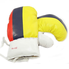 16OZ COLOMBIA FLAG (Lasani Sports) Tags: weighted boxing gloves