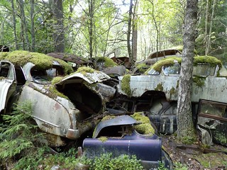 Parking bucolique