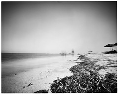 Low Season (Vincenzo Caniparoli) Tags: analog argentique analogico bw blackandwithe biancoenero foma fomapan100 forostenopeico grandeformato homemadepinhole homemadepinholecamera largeformat monochrome pinhole paesaggio stenopeico stenopeica sardegna