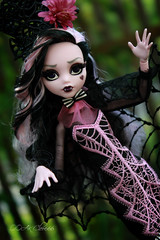 IMG_9839 (Cleo6666) Tags: draculaura collector draculaurasweet1600collectordoll monster high monsterhigh mattel deluxe deluxeedition